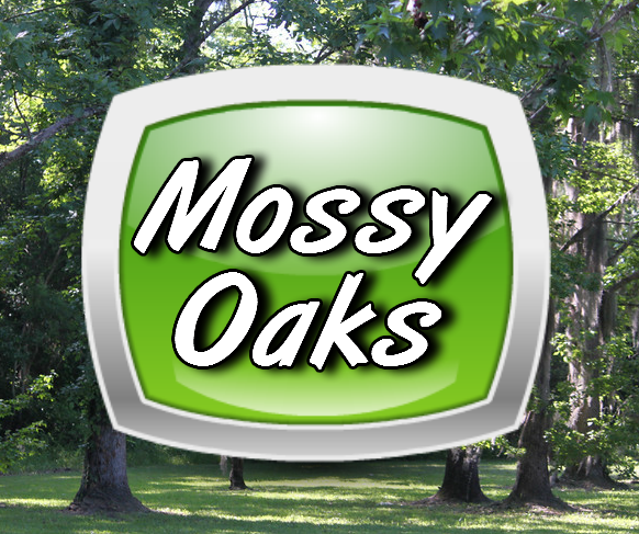 Mossy Oaks RV Homes in Titusville Florida